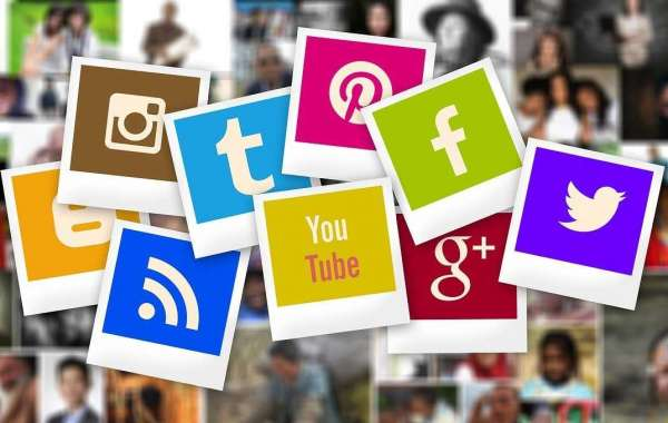 Organic SEO Or Social Media Marketing: Which One Is Super?