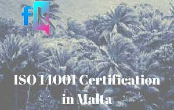 How to organize a training program for ISO 14001 Certification in Malta