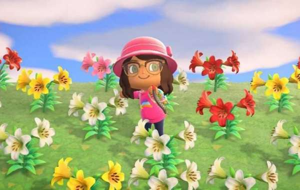 Buy Animal Crossing Items positive and negative